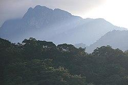 Udzungwa Mountains-2.jpg
