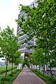 Uithof, 3584 Utrecht, Netherlands - panoramio (27).jpg