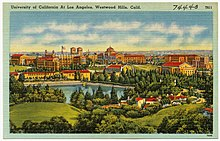 University of California, Los Angeles - Wikipedia