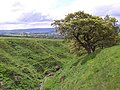 Upper Reaches of Woomber Beck - geograph.org.uk - 176558.jpg