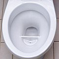 Urine-diversion flush toilet (3331044734).jpg