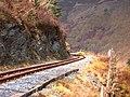 Vale of Rheidol Railway track - geograph.org.uk - 153826.jpg