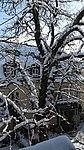 Valentinhaus-Gärten im Winter 13.jpg