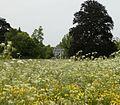 Vergezicht op het landhuis - De Bilt - 20413859 - RCE.jpg