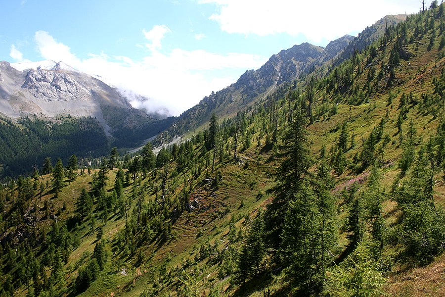 Le versant nord du col Fromage dans le Queyras.