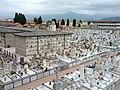 Viareggio, cimitero, 2012, 06.jpg