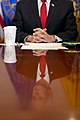 Vice President Pence meets with the Coronavirus Taskforce (49595828873).jpg