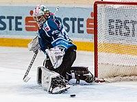 Vienna Capitals vs Fehervar AV19 -200-5.jpg