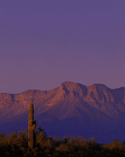 File:View in Cabeza Prieta National Wildlife Refuge, Arizona.jpg