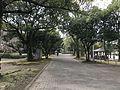 View in Miyazaki Central Park.jpg