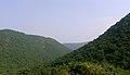 View of Eastern ghats from Gudilova 01.jpg