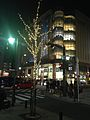 View of Iwataya at night 20131228.jpg