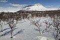 View towards Saana from Kilpisjärvi Nature Centre, Lapland, Finland, 2015 April.jpg