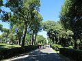Villa Borghese - Viale del Museo Borghese - panoramio.jpg