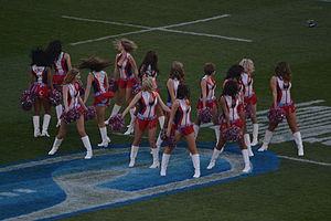 Bulls (rugby union) - The Bulls Cheerleaders