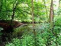 Vorholzer Bergland (7).JPG