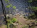 Vylet k Cernemu jezeru Sumava - 9.srpna 2010 190.JPG