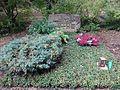 Waldfriedhof Zehlendorf Herbert Lander.jpg