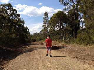 Werakata National Park Protected area in New South Wales, Australia