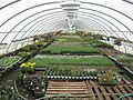 Wasatch Shadows Nursery, Green House, Sandy, UT - panoramio.jpg