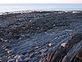 Wave-cut platform below Allt Wen - geograph.org.uk - 1750017.jpg