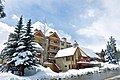 Wedgewood Lodge Breckenridge Exterior Winter.jpg