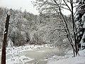 Weierrain pond - panoramio.jpg
