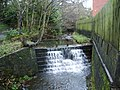 Weir behind builder's yard on The Butts, Barnoldswick - geograph.org.uk - 622757.jpg