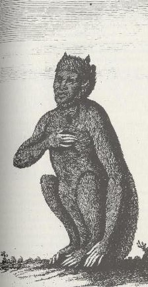 Werecat - 1763 engraving of a weretiger
