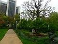 Western Illinois University (34435992466).jpg