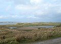 Wet Ground - geograph.org.uk - 351854.jpg