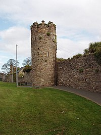 Wexford town wall - geograph.org.uk - 1248429.jpg