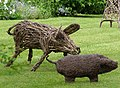 Wicker pigs on the lawn, Foxgloves, Penn Common - geograph.org.uk - 441171.jpg