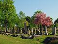 Wiener Zentralfriedhof, Frühling.jpg