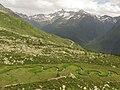 Wiesermoos - Casere di Predoi - Valle Aurina.jpg
