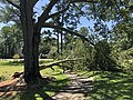 Wilmington NC Damage Isaias 2.jpg