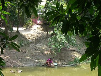 Water issues in developing countries - Woman Washing at Water's Edge, Bangladeshi Village