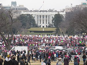 2017 Women's March - The Women's March near the White House