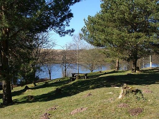 Woodland picnic area beside the Llwyn-onn reservoir - geograph.org.uk - 1744416