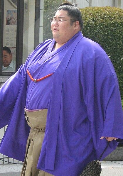 大相撲力士一覧 - Lists of sumo wrestlers