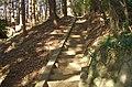 Yamiya Shrine(Eighth Palaces Shrine)(a.k.a. Shiga Shrine) - 八宮神社(志賀神社) - panoramio (2).jpg