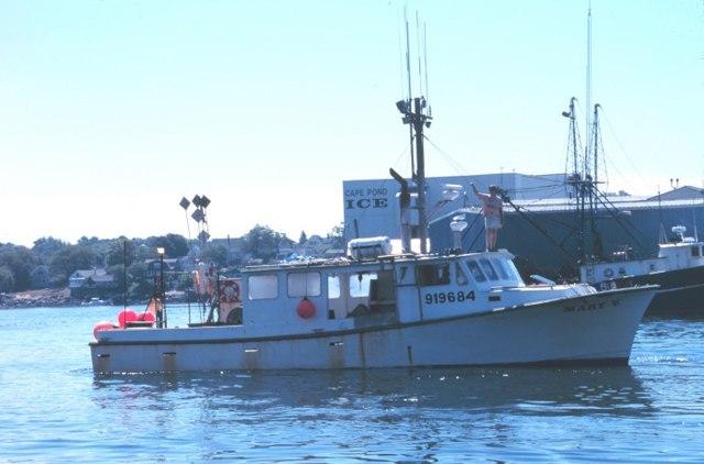Yellowfin tuna fishing boat