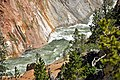 Yellowstone River (Grand Canyon of the Yellowstone, Wyoming, USA) 8 (33787151198).jpg