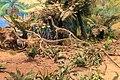 Zigong Dinosaur Museum Agilisaurus herd.jpg