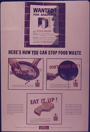 """Here's How You Can Stop Food Waste""..."
