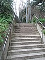 """QA steps"" - geograph.org.uk - 666405.jpg"