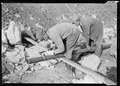 """William L. Carden, of Anderson County, Tennessee, acetylene burner, cutting pipe at Norris Dam site. The helper is... - NARA - 532683.tif"