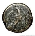 (Monnaie Bronze Lacédémone) Cléomène III btv1b8569984j.jpg