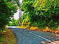 Ο δρόμος προς τον Κισσό.jpg