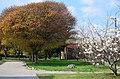 Ботанічний сад Хмельницького національного університету по вулиці Інститутській.jpg